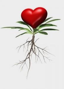 raíz_florecer