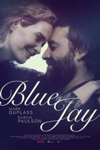 Blue Jay 2