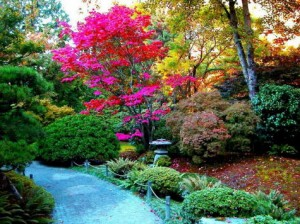 colores-jardin