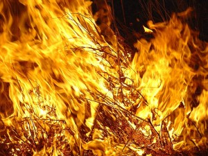 fuegoes