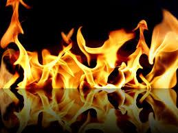 fuego 14