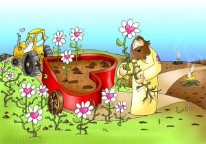Parábola el trigo y la mala hierba